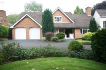 Detached Bungalow for sale in The Orchard...