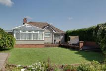 Detached Bungalow in Crow Ash Road...