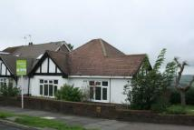Detached Bungalow to rent in Larkfield Way, Brighton