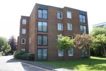 Flat to rent in London Road, Patcham...