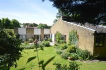 4 bed Detached Bungalow in 8 Pearman Drive...