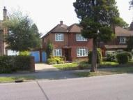 4 bedroom Detached house to rent in ORCHARD DRIVE, Woking...