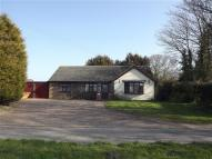 3 bed Bungalow for sale in Repps with Bastwick