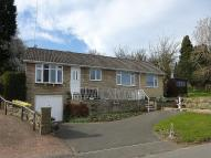Detached Bungalow for sale in Holymoor Road...