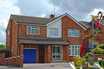 4 bedroom Detached house to rent in Beech Hill, Wellington...
