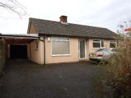 Detached Bungalow to rent in Galmington Road...
