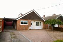 Detached Bungalow for sale in Willingham, Cambridge