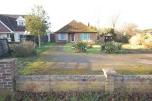 Detached Bungalow in Great Shelford, Cambridge