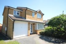 4 bed Detached house for sale in Cherry Hinton, Cambridge