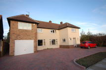 5 bedroom Detached home for sale in Wingate Way, Cambridge