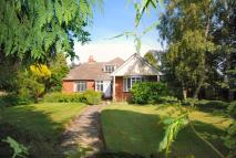 Detached property to rent in Wincelow Hall Road...