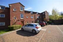 Tarvin Avenue Apartment to rent