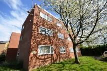 Apartment to rent in 4 Craig Road...