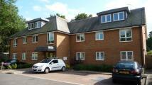 Apartment to rent in Primrose Court, Guildford