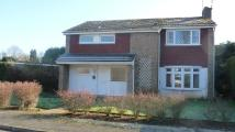 Detached home to rent in Chestnut Way, Godalming