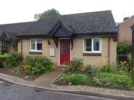 Terraced Bungalow in Kimbolton Court...