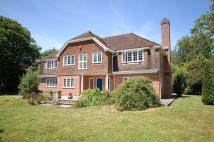 5 bedroom Detached house in Wildwood, Barton On Sea