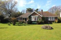 3 bed Detached Bungalow for sale in The Spinney, Downton