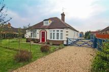 Detached Bungalow for sale in Lincoln Road...