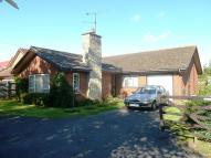 Bungalow to rent in Arbor Lane, Winnersh...