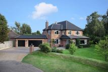 5 bed Detached house for sale in Woodland Drive...