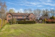 4 bed Detached home for sale in Ovington, Watton