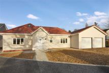 3 bed Detached Bungalow for sale in Orchard Mews, Leyland...