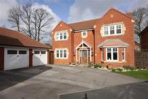 Detached home in Meadowland Close...