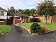 Detached Bungalow to rent in Higher Meadow, Leyland...