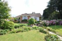 4 bed Detached property for sale in Horse Lane Orchard