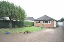3 bed Detached Bungalow for sale in Danes Close
