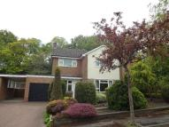 Detached property to rent in SANDYGATE S10 Burnt...