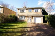 Euston Close Detached house for sale