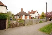 Bungalow for sale in Nettleham Road, Lincoln...