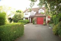 3 bed Detached home for sale in Brent Street, Brent Knoll