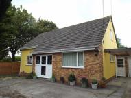 Detached Bungalow for sale in Stoddens Road...
