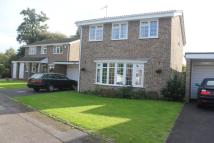 property to rent in FLORAL FARM...