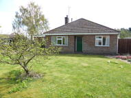 Detached Bungalow in Edenham Road, Hanthorpe...