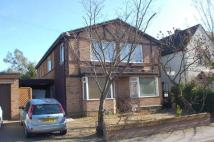 House Share in Sandfield Road, Oxford