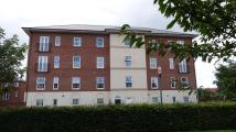 Apartment to rent in Richmond House,