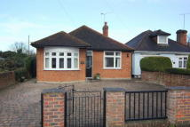 3 bed Detached Bungalow in Orchard Road, Old Windsor