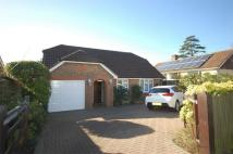 Detached Bungalow for sale in Uplands Drive, Uckfield...