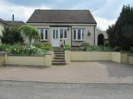 Detached Bungalow for sale in Hare Street Road...