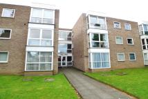 Longlands Road Flat to rent