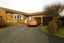 3 bed Bungalow in Berrydale, Northampton...