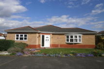 Aldeby Close Bungalow for sale