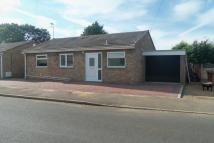 3 bed Bungalow for sale in Ash Grove, Chatteris...