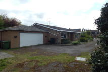 Bungalow for sale in The Shrubbery, Chatteris...