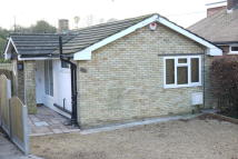 2 bedroom Detached Bungalow for sale in Mancroft Road...