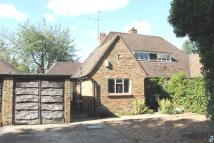 Bungalow for sale in Cowper Road, Harpenden...